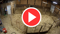 Lehrman Simmentals Calving Barn brought to you by Onsight 24/7